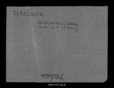 Pepłówek, obecnie część wsi Pepłowo. Kartoteka powiatu mławskiego w średniowieczu. Kartoteka Słownika historyczno-geograficznego Mazowsza w średniowieczu