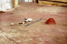 Rzeźby z świątyni śiwaickiej (Dokument ikonograficzny)