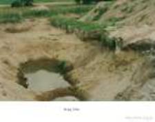 Wolin : stanowisko Mokrzyca Wielka, badania wykopaliskowe