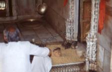Temple Karneji mat, Deshnok, Rajasthan (Iconographic document)