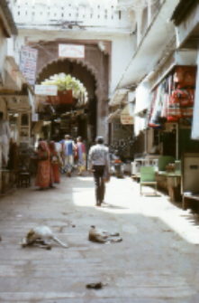 Street in the town, Rajasthan (Iconographic document)