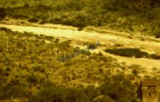 Stado kóz pasterzy rabari w wyschniętym korycie rzeki (Dokument ikonograficzny)