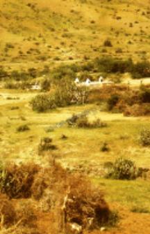 The shrines of shepherds kachchi rabari (Iconographic document)