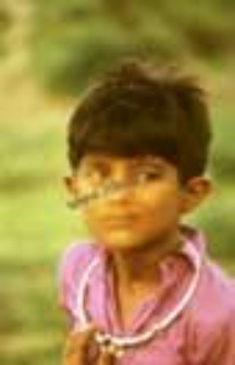 Portrait of a boy, kachchi rabari (Iconographic document)
