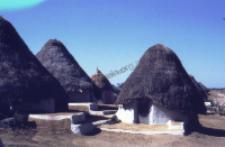 Traditional village of kachchi rabari (Iconographic document)