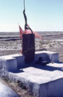Traditional village, shrines of kachchi rabari (Iconographic document)