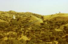 Kaplice przy świątyni Mommai Mata (Dokument ikonograficzny)