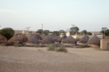 Traditional huts (Iconographic document)