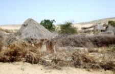 Old houses (bhunga) in the Thar desert (Iconographic document)