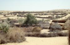 Clay cottage bhunga on the Thar desert (Iconographic document)