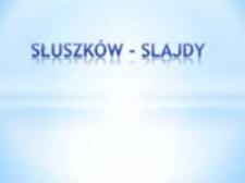 Słuszków, gm. Mycielin, pow. kaliski, woj. wielkopolskie