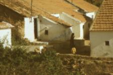 Ulice wiejskie (Dokument ikonograficzny)