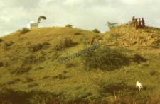 Wiejska kapliczka, pasterze kachchi rabari (Dokument ikonograficzny)