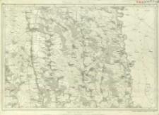 Bl. 46. Umgebungen von Tłuste und Borzczów