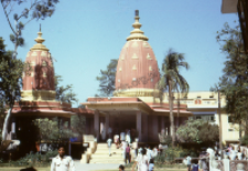 Hindu Temple in New Delhi (Iconographic document)