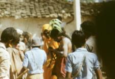 Gauri Dance, Bhils (Iconographic document)