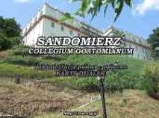 Sandomierz-Collegium Gostomianum : field data - descriptive : parcel cards