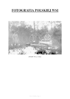 [The work in a forest]] [An iconographic document]