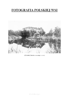 [A view at an overgrown lake] [An iconographic document]