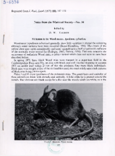 Melanism in the Wood mouse, Apodemus sylvaticus