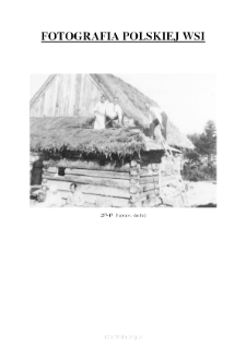 [Repairing the roof] [An iconographic document]