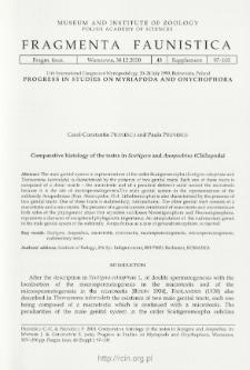 Comparative histology of the testes in Scutigera and Anopsobius (Chilopoda)