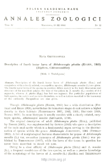 Description of fourth instar larva of Ablabesmyia phatta (EGGER, 1863) (Diptera, Chironomidae)