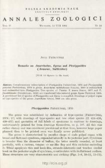 Remarks on Anarrhotus, Epeus and Plexippoides (Araneae, Salticidae)