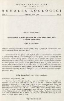 Redescriptions of three species of the genus Icius SIMON, 1876 (Aranei: Salticidae)