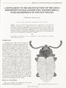 A supplement to the recent review of the genus Endomychus panzer (Coleoptera: Endomychidae), with descriptions of two new species