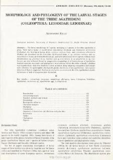 Morphology and phylogeny of the larval stages of the tribe Agathidiini (Coleoptera: Leiodidae: Leiodinae)