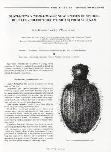 Sundaptinus tamdaoensis, new species of spider-beetles (Coleoptera: Ptinidae) from Vietnam