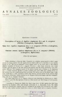 Descriptions of larvae of Agabus uliginosus (L.) and A. congener (THUNB.) (Coleoptera, Dytiscidae) = Opisy larw Agabus uliginosus (L.) i A. congener (THUNB.) (Coleoptera, Dytiscidae)