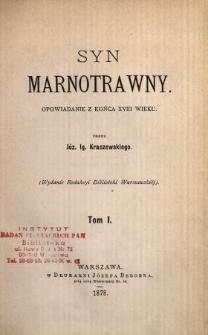 Syn marnotrawny : opowiadanie z końca XVIII wieku. T. 1 /