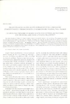 Skandynawski skarb złotych przedmiotów z przełomu starożytności i średniowiecza z miejscowości Wapno, woj. pilskie
