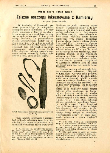 Żelazne oszczepy inkrustowane z Kamienicy, w pow. jarosławskim