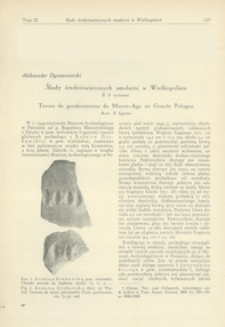 Ślady średniowiecznych smolarni w Wielkopolsce