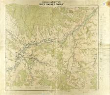 Fotogrametryczna mapa Rabki i okolic