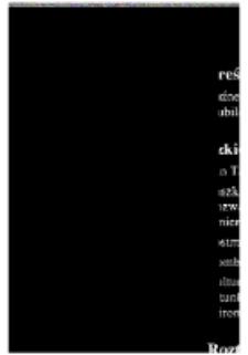 Teksty Drugie Nr 1-2 (1997), Spis treści