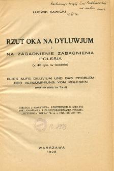 Rzut oka na dyluwjum i na zagadnienie zabagnienia Polesia