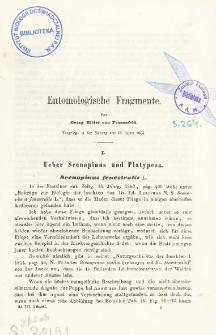 Entomologische Fragmente