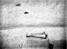 Stanowisko oryniackie Horodok II : z rozkopywań Ludwika Sawickiego w 1925 roku
