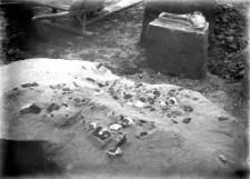 Stanowisko Horodok II : skupisko wyrobów krzemiennych 1926