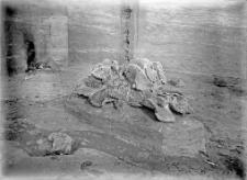 Stanowisko Horodok II : czaszka mamuta