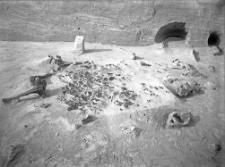 Stanowisko Horodok II : najbogatsze skupienie wyrobów krzemiennych, wokoło kręgi mamuta