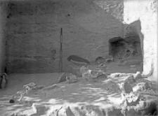 Stanowisko Horodok II : skupienie kości