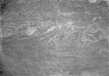 Stanowisko Horodok VII : profil ściany wykopu