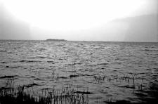 Okolice Nowogródka : jezioro