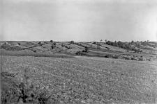 Wieś Kawęczyn pod Szczebrzeszynem były pow. Zamość : widok na zbocze południowo-wschodnie wału