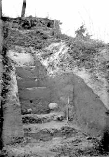 Góra Puławska : widok na szurf I z 1949 roku